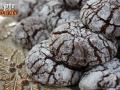 Χριστουγεννιάτικα μπιστκότα σοκολάτας