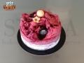 Gelato Cake - Yogurt Forest Fruits